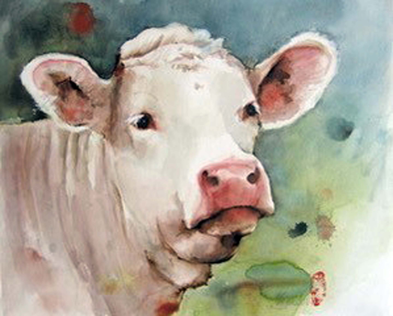 La Vache blanche (Witte koe), 50 x 60 cm